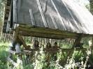 U Pana Modlawskiego 2009_01